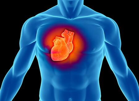 Лечение аритмии сердца в Израиле